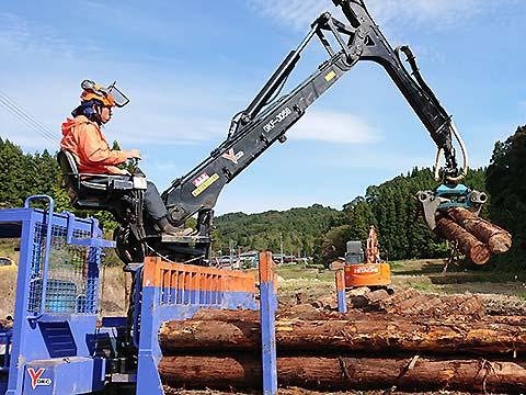 伐採した木をまとめる様子