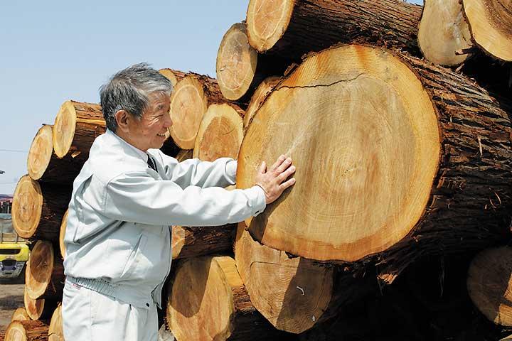 伐採した木と坂詰会長